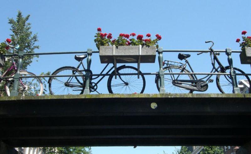 Bikes and Dyks Tour Amsterdam