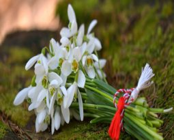 Spring tales of Mărțișor and few more …